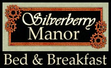 Silverberry Manor--Bed & Breakfast